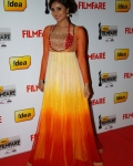 60th-idea-filmfare-awards-south-photo-gallery-10