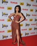 60th-idea-filmfare-awards-south-photo-gallery-50