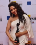 60th-idea-filmfare-awards-south-photo-gallery-55