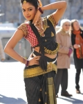 amala-paul-dancing-photos-iddarammayilatho-movie-7