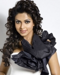 amala-paul-latest-photos-1