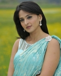 anushka-in-damarukam-8