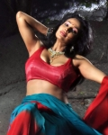 asha-shaini-hot-spicy-stills-13