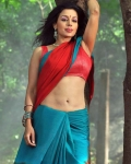 asha-shaini-hot-spicy-stills-8