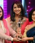 cine-maa-awards-2013-function-photos-44