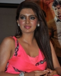 geeta-basra-hot-images-1