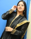 keerthi-chawla-at-scam-audio-launch-5
