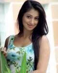 lakshmi-rai-hot-photo-shoot-10