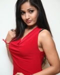 madhavi-latha-photo-stills-20