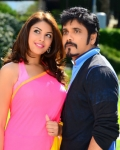 nagarjuna-bhai-movie-photo-gallery-11