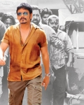 nagarjuna-bhai-movie-photo-gallery-4