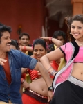 nagarjuna-bhai-movie-stills-3