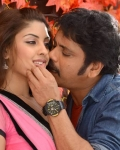 nagarjuna-bhai-movie-stills-5