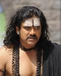 nagarjuna-in-sri-jagadguru-aadi-sankara-movie-stills-1