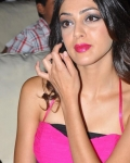 parvathi-melton-latest-stills17