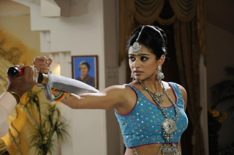 priyamani-chandi-movie-gallery-13