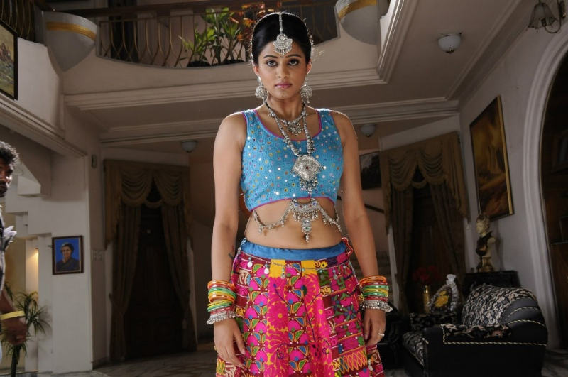 priyamani-chandi-movie-gallery-15