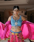 priyamani-chandi-movie-gallery-14