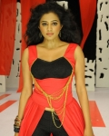 priyamani-chandi-movie-gallery-3