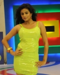 priyamani-chandi-movie-gallery-5