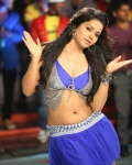 rachana-mourya-hot-stills-17