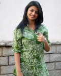 rakshita-photos-at-bus-stop-sucess-meet-13