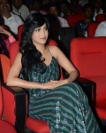 ram-charan-yevadu-movie-audio-launch-1