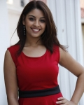 richa-gangopadhyaya-latest-stills-12