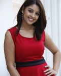 richa-gangopadhyaya-latest-stills-14
