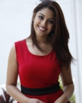 richa-gangopadhyaya-latest-stills-17