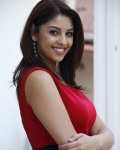 richa-gangopadhyaya-latest-stills-2