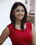richa-gangopadhyaya-latest-stills-20