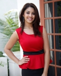 richa-gangopadhyaya-latest-stills-21