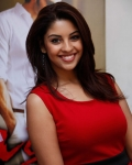 richa-gangopadhyaya-latest-stills-22