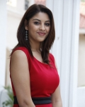 richa-gangopadhyaya-latest-stills-4