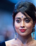 shriya-at-midnights-children-premiere-at-london-16