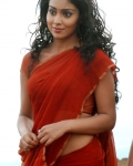 shriya-in-love-to-love-moive-stills-3