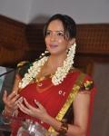 tapsee-lakshmi-prasanna-in-half-saree-1