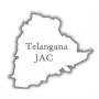 'Rayala Telangana' not acceptable: TJAC