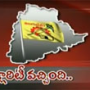 TDP to clarify it's stand on Telangana