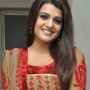 Tashu Koushik at Goola Seenu Audio Launch