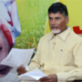 Chandrababu Differs Errabelli Comments